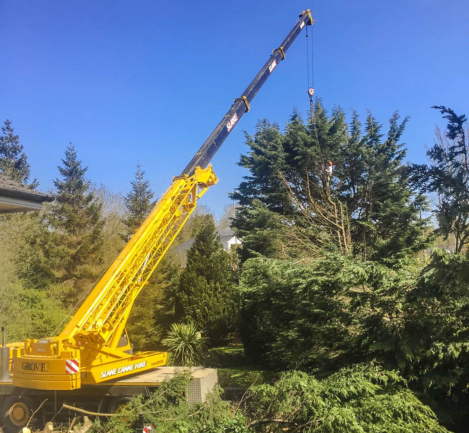 Tree Removal by Crane in Meath and Dublin