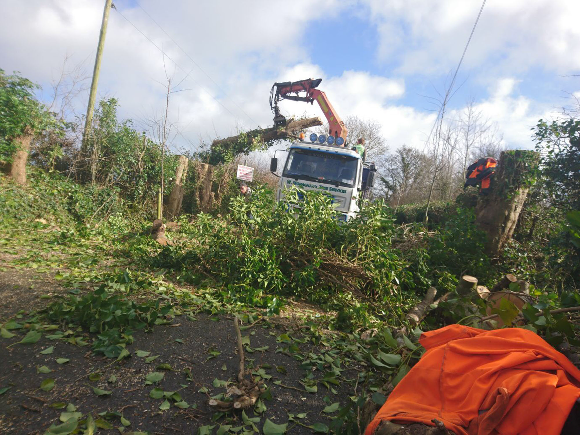 Green Waste Removal Site Clearance Meath and Dublin