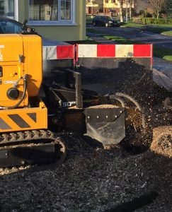 Stump Grinding Meath and Dublin