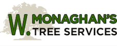 W.Monaghan's Tree Services in Meath & Dublin | Tree Surgeon