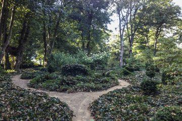 Tree Pruning and Garden Maintenance