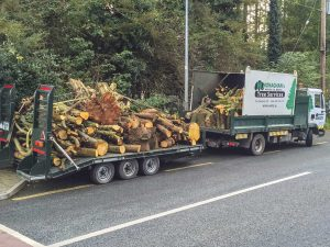 Firewood for Sale in Meath and Dublin